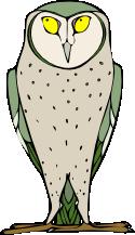 [owl]