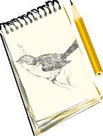 [drawing]