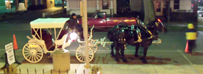 [carriage rides]